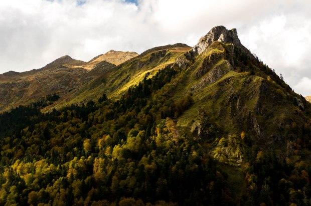 PyreneesShreddedLight
